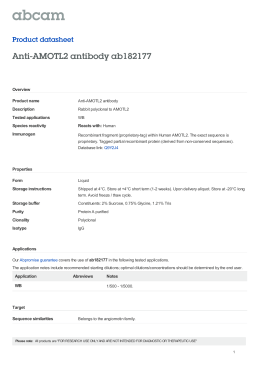Anti-AMOTL2 antibody ab182177 Product datasheet Overview Product name
