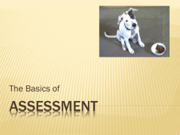 ASSESSMENT The Basics of