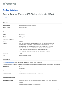 Recombinant Human SPACA1 protein ab164368 Product datasheet 1 Image Overview