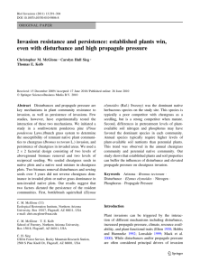 Invasion resistance and persistence: established plants win,