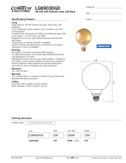 LG6903DGD 3W LED G40 Filament Lamp, E26 Base Specifications/Features Lamp