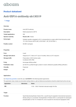 Anti-USP16 antibody ab130319 Product datasheet 1 Image Overview