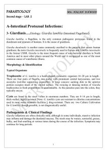 A-Intestinal Protozoal Infections: OLOGY PARASIT