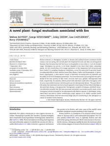 efungal mutualism associated with fire A novel plant BAYNES ,