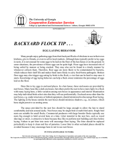 BACKYARD FLOCK TIP . . . Cooperative Extension Service EGG LAYING BEHAVIOR