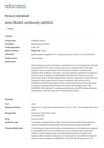 Anti-IRAK2 antibody ab5523 Product datasheet 1 Image Overview