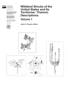 Wildland Shrubs of the United States and Its Territories: Thamnic Descriptions: