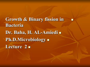 Growth & Binary fission in  Bacteria Dr. Baha, H. AL-Amiedi