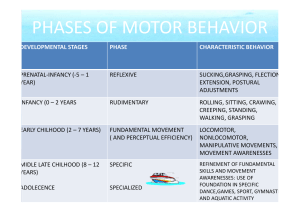 PHASES OF MOTOR BEHAVIOR