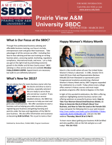Prairie View A&M University SBDC  What is Our Focus at the SBDC?