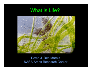 What is Life? David J. Des Marais NASA Ames Research Center