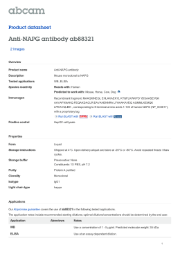 Anti-NAPG antibody ab88321 Product datasheet 2 Images