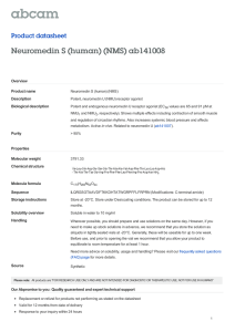 Neuromedin S (human) (NMS) ab141008 Product datasheet Overview Product name
