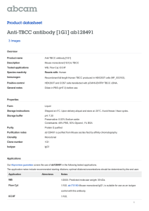 Anti-TBCC antibody [1G1] ab128491 Product datasheet 3 Images Overview