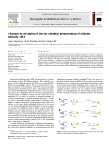 -Lactam-based approach for the chemical programming of aldolase b antibody 38C2