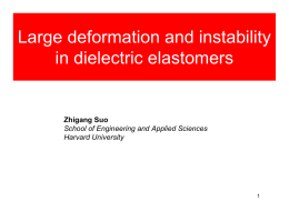Large deformation and instability in dielectric elastomers Zhigang Suo