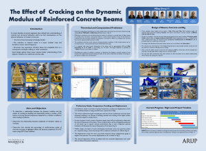 The Effect of  Cracking on the Dynamic MEng Group 11