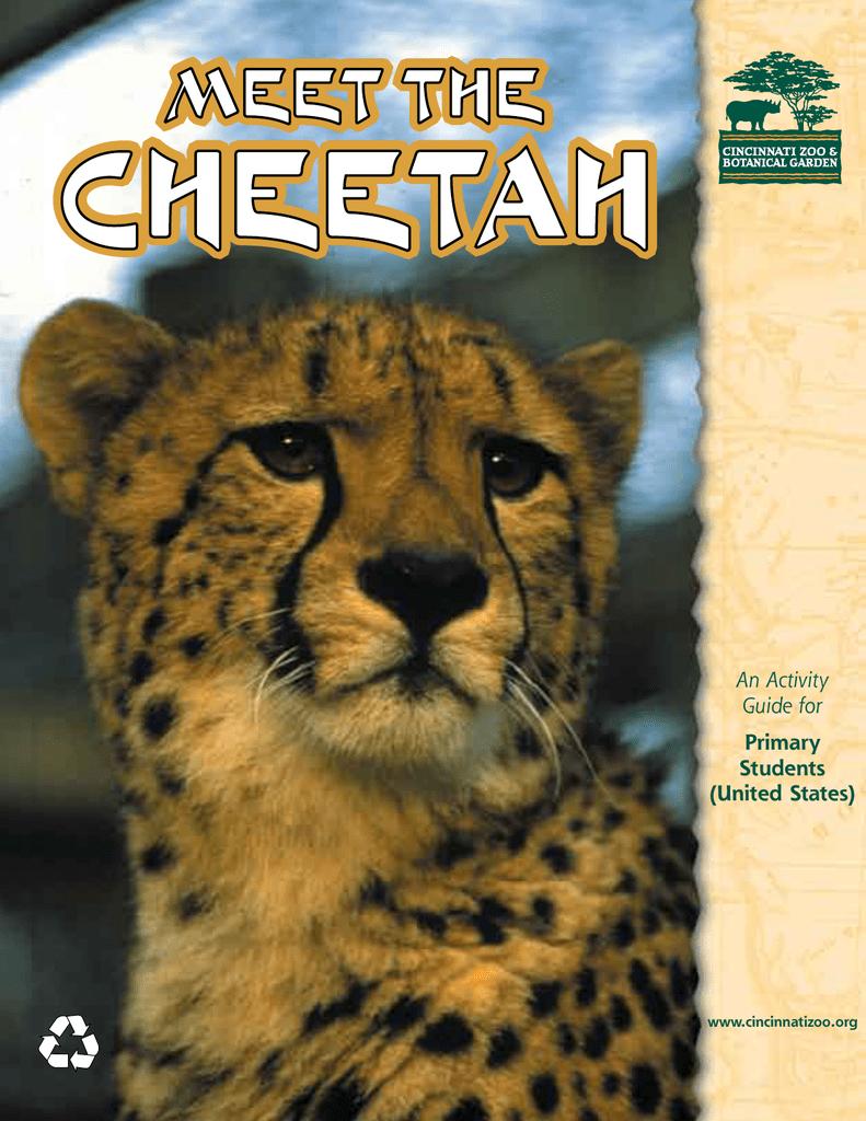 cheetah 2.4.4