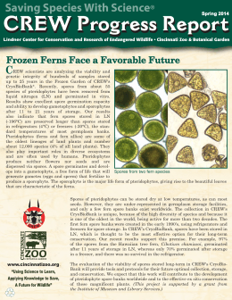 Saving Species With Science C Frozen Ferns Face a Favorable Future ®
