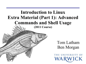 Introduction to Linux Extra Material (Part 1): Advanced Commands and Shell Usage