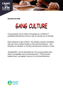 Young people can be drawn into gangs as a method... protecting themselves and as a way of carving out an...