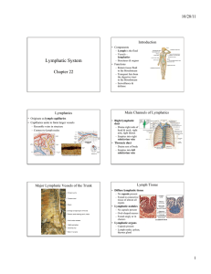 Lymphatic System Chapter 22 10/28/11 Introduction