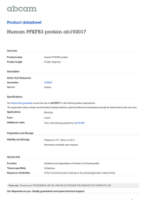 Human PFKFB3 protein ab192017 Product datasheet Overview Product name