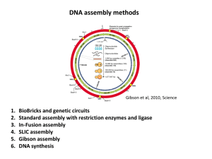 DNA assembly methods