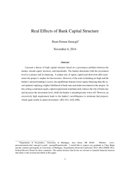 Real Effects of Bank Capital Structure Ihsan Erman Saracgil November 6, 2014