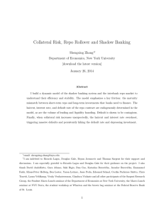 Collateral Risk, Repo Rollover and Shadow Banking