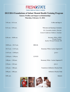 2013/2014 Foundations of Infant Mental Health Training Program