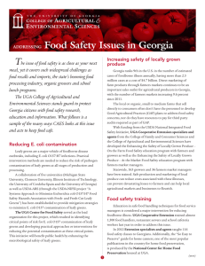 T Food Safety Issues in Georgia