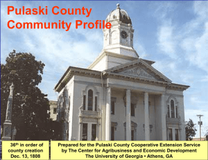 Pulaski County Community Profile