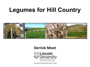 Legumes for Hill Country Derrick Moot
