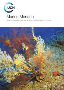Marine Menace Alien invasive species in the marine environment