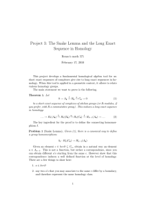 Project 3: The Snake Lemma and the Long Exact