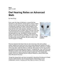 Owl Hearing Relies on Advanced Math