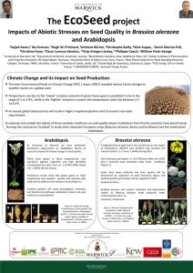 EcoSeed The project Brassica