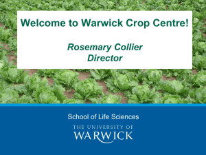 Welcome to Warwick Crop Centre! Rosemary Collier Director School of Life Sciences