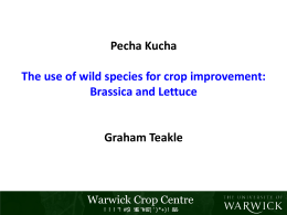 Pecha Kucha Graham Teakle The use of wild species for crop improvement: