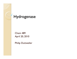 Hydrogenase Chem 489 April 20, 2010 Philip Duttweiler