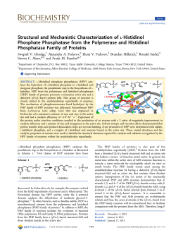 ‑Histidinol Structural and Mechanistic Characterization of