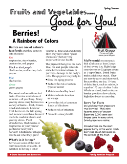 Good for You! Berries! Fruits and Vegetables.... A Rainbow of Colors