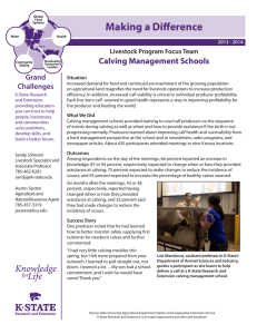 Making a Difference Calving Management Schools Grand Challenges