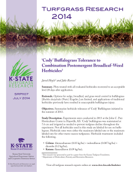 2014 Turfgrass Research 'Cody' Buffalograss Tolerance to Combination Postemergent Broadleaf-Weed