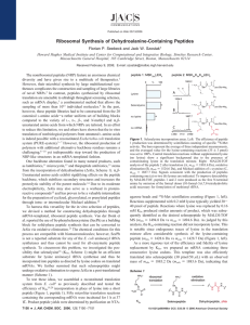 Ribosomal Synthesis of Dehydroalanine-Containing Peptides