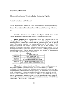 Supporting Information Ribosomal Synthesis of Dehydroalanine Containing Peptides