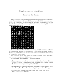 Gradient descent algorithms Supervisor: Ben Graham