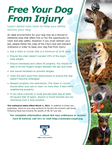 Free Your Dog From Injury secure your dog.