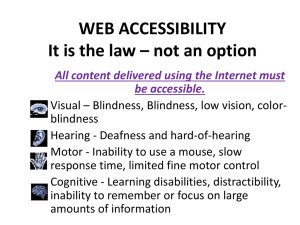 WEB ACCESSIBILITY It is the law – not an option